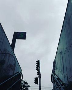 La porta di ieri con la schifezza del cielo grigio di oggi - Replica porta a porta di ieri ...