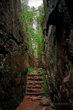 Path to Agawa Rock Pictographs, Lake Superior Provincial Park New Travel, Canada Travel, Acadia National Park Camping, Lake George Village, Summer Vacation Spots, Great Lakes Region, Lake Superior, Best Vacations, The Great Outdoors