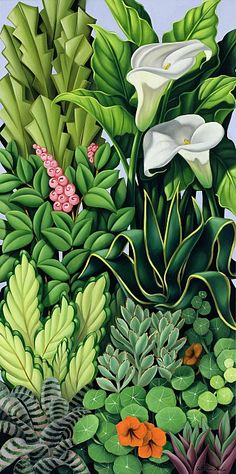 Foliage By Catherine Abel