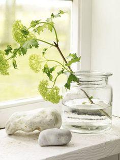Branch Arrangements | via Pillar Box Post