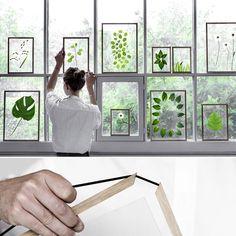 Scandinavian minimalist Frame by MOEBE Interior Design Plants, Plant Design, Small House Decorating, Interior Decorating, Scandinavian Home, Diy Arts And Crafts, Minimalist Decor, Home Decor Inspiration, Wedding Inspiration