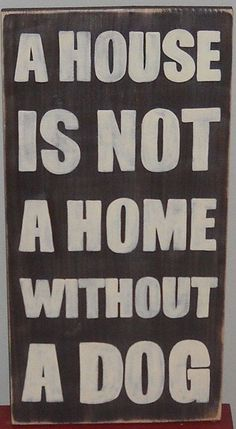 A HOUSE IS NOT A HOME WITHOUT A DOG  -photo credit to the owner #dogs #cats
