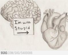 Brain calls heart stupid