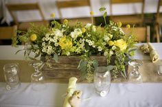 00-center_blog.fiftyflowers.com