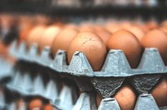 Egg Wars: Why Missouri Wants California's Law Protecting Chickens Overturned