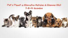 Il 7-8 e 14 dicembre il team di Consulenti Nutrizionali Pet's Planet di Biella-Vercelli-Novara vi aspetta ogni giorno dalle ore 10:30 alle ore 19:00 nelle stradine del Castello Ricetto di Ghemme (Novara) per fornire Consulenza Nutrizionale ai vostri amici 4 zampe e per farvi conoscere i prodotti Pet's Planet dedicati a cani e gatti.
