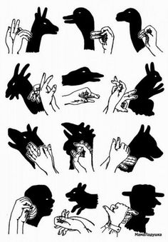 Shadow Art, Shadow Play, Shadow Puppets With Hands, Hand Shadows, Shadow Theatre, Sign Language Alphabet, Kids Room Wall Art, Hand Art, Hand Puppets