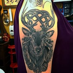 Celtic stag by Adam Sky, Rose Gold's Tattoo, San Francisco, CA - Imgur