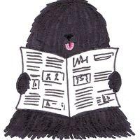 Blog magyarul tanulóknak. Cikkek, hírek, érdekességek Magyarországról szólistákkal. - Blog for learners of Hungarian. News, hot topics and interesting ideas in Hungarian with glossary.