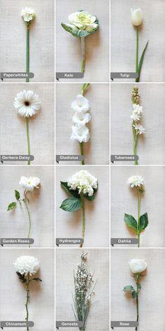 Flores blancas de la boda