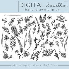 Sketchbook Drawings, My Drawings, Herbs Illustration, Botanical Line Drawing, Hand Lettering Tutorial, Doodle Borders, Plant Drawing, Flower Doodles, Photoshop Brushes
