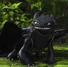 Toothless XD I just love how he can change from one thing to another in a second :D