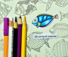 Atelier Gina Pafiadache: Lost Ocean - Oceano Perdido - Colorindo Peixes (3)...