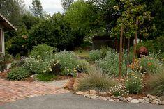 Decomposed Granite Granite And Drought Tolerant Garden On