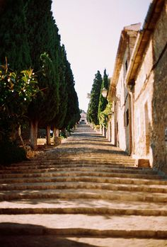 Pollenca, Mallorca I remember climbing these steps all the way to the top... to be rewarded with a fabulous view and an ice cream... a quick sit down and back down we go!!! Well worth a look.