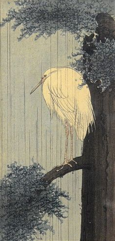 V.NICE ANTIQUE SIGNED JAPANESE WOODBLOCK PRINT OF CRANE IN RAIN PERCHED ON TREE