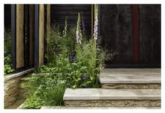 Cloudy Bay Chelsea Garden 2014 by Andrew Wilson and Gavin McWilliam. Photography by Paul Childs.