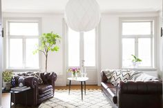 Leather sofa and armchair in masculine living room with white light fixture and indoor plant
