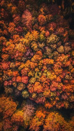 The addition of cameras to drones may have just changed the way many industries run forever. Cityscape Photography, Autumn Photography, Aerial Photography, Best Landscape Photographers, Foto Poster, Autumn Aesthetic, Boxing Day, Pixel, Drones