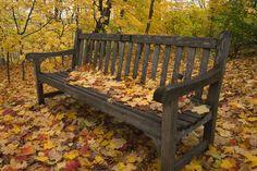 San Diego Gardens Arboretums | ... gardens or mn65b hosta garden bench minnesota landscape arboretum mn