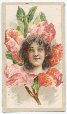 Beauties - Flower Girls ~ British American Tobacco Co. Vintage Labels, Vintage Ephemera, British American Tobacco, Victorian Women, New York Public Library, Vintage Advertisements, Vintage Flowers, Flower Children, Flower Girls