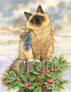 Race Studios -  Christmas Cats -- by Donna Race