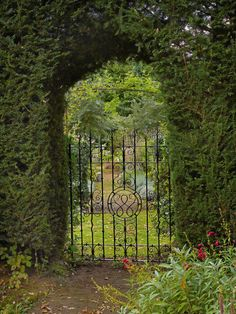 style court: Jekyll and Jekyll-  Gertrude Jekyll and the Country Garden