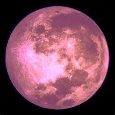 "coolstorylori: "" TONIGHT! The Pink Moon! Pink..pink..pink..pink……pink moon. """