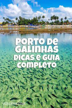 Guia completo de Porto de Galinhas, Pernambuco. Confira as principais dicas, quando ir, onde ficar e o que fazer em um dos melhores destinos do Brasil