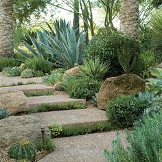 "Make a park out of a path This entry path feel more like a nature trail than a garden walk. Thyme grows between steps; boulders, cactus, and rosemary fringe the path's edges. Even before guests get to the house, wide steps (made of concrete aggregate) encourage them to slow down and enjoy the garden. If your yard doesn't have enough sun for thyme, tuck Corsican mint or Japanese sweet flag between your steps or pavers; both have scented foliage. Stagger your pavers to slow the ""journey."""