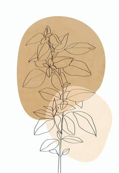Photo Wall Art, Drawing Prints, Art Prints, Plant Painting, Line Art Drawings, Abstract Line Art, Plant Drawing, Abstract, Minimalist Art