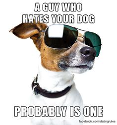 A guy who hates your dog probably is one. #datingrules