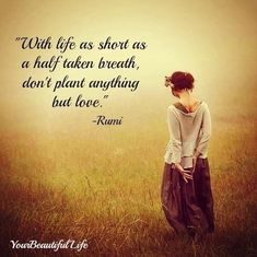 With life as short as a half taken breath, don't plant anything but love. - Rumi, 1207-1273. Persian mystic and poet #life #short #love Rumi Love Quotes, Positive Quotes, Life Quotes, Inspirational Quotes, Motivational, Rumi Quotes On Beauty, Yoga Quotes, Kahlil Gibran, Best Short Quotes