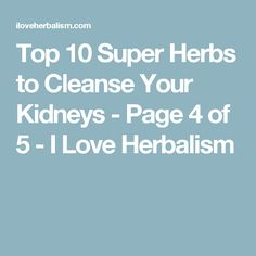 Top 10 Super Herbs to Cleanse Your Kidneys - Page 4 of 5 - I Love Herbalism