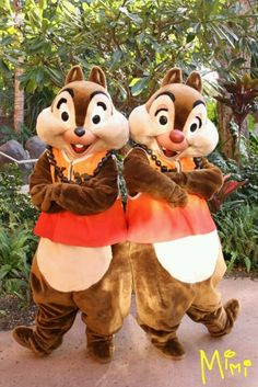 Aulani  Hawaii  Chip & Dale