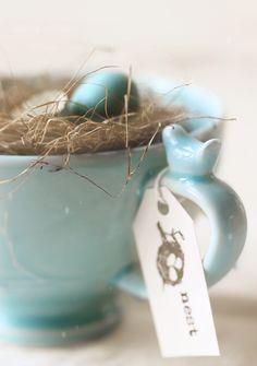 Bird's Egg Blue