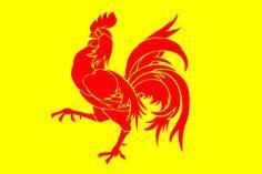 Flag of Walloon Region