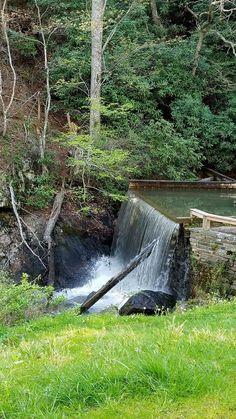 Nc Mountains, Western North Carolina, Outdoor Furniture, Outdoor Decor, Waterfalls, Hammock, Plants, Plant, Hammocks