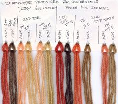 Dyes from fungi and mushrooms. from www.mushroomsforcolor.com