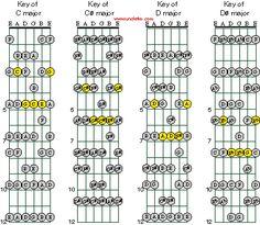 The Diatonic Signature For Guitar