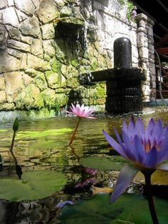 Shiva Linga and Purple Lotus