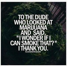 The most recommended cannabis jokes Stoner Quotes, Weed Quotes, Weed Memes, Weed Humor, 420 Quotes, Weed Funny, Weed Facts, Funny Shit, Frases