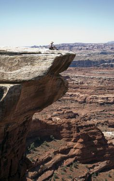 The scenic view from Canyonlands National Park ~ The White Rim Trail Baobab Tree, Canyonlands National Park, Colorado River, Heaven On Earth, Tree Of Life, Rafting, Utah, Natural Beauty, Beautiful Places