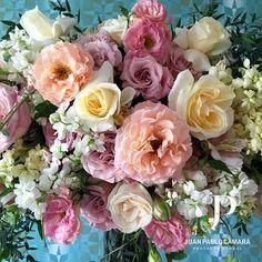 Floral Design #juanpablocamarapf
