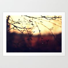 Moody morning  Art Print by Annie Japaud   - $18.72 Annie, Tapestry, Art Prints, Image, Decor, Hanging Tapestry, Art Impressions, Tapestries, Decoration