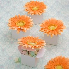 Perfectly Plain Collection Orange Daisy Box Favors