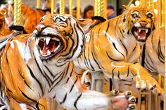 Detroit Tigers Carousel