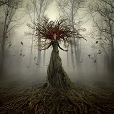 Forest Guard (Dryad) by Alcove