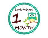 Monthly Owl Tummy Tags - DIY Monthly (Printable Onesie Stickers)  Stickers/Iron-on Transfers - Perfect for Monthly Baby Photos. $5.00, via Etsy.