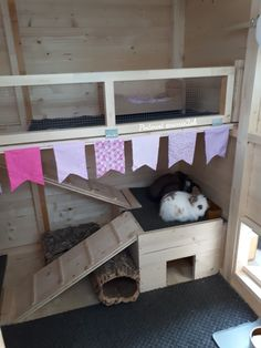 Rabbit hutches, Rabbit shed, Outdoor rabbit hutch, Diy rabbit hutch, Rabbit c. Bunny Sheds, Rabbit Shed, Rabbit Hutch Plans, Rabbit Run, House Rabbit, Rabbit Hutches, Pet Rabbit, Indoor Rabbit House, Rabbit Cages Outdoor